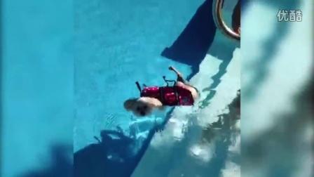 【You Tube奇趣精选】爱游泳的狗