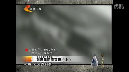 刘汉集团覆灭记(上) _高清