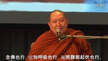《佛教与众不同之处:开发智慧》——隆波帕默尊者|2013年3月12日