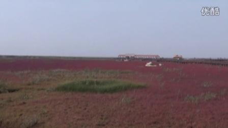 2014内蒙东北自驾游之四十三《盘锦·红海滩》