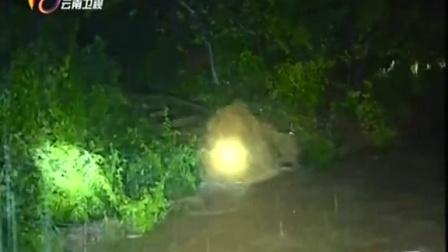 华坪县遭遇特大暴雨 致515伤9失踪2失联 云南新闻联播 20150916