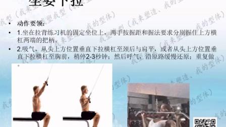 背部肌肉锻炼方法
