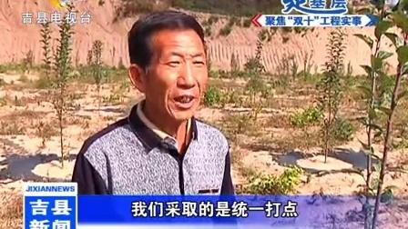 全县1.2万亩水果经济林项目已完工