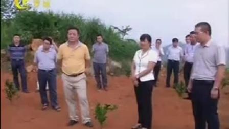 罗城仫佬族自治县20150827罗城新闻