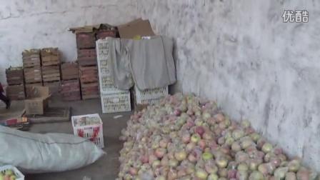 中国安徽宿州砀果砀山特产正宗酥梨苹果红富士联系微信13285572629