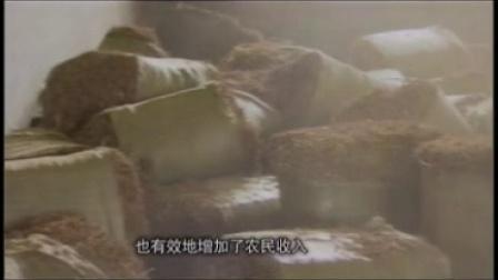 04-去除膻味山羊奶挤占奶市场