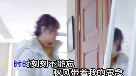 枫舞-断肠相思泪