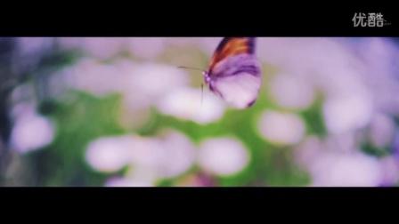 【日韩MV】에프엑스_4 Walls_Music Video