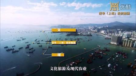 荣华集团-荣华(上海)投资集团商业宣传大片