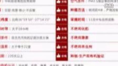 阿克苏8000份一级红枣淘宝网0元秒