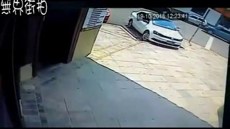 马拉车乱跑,主人被抛出