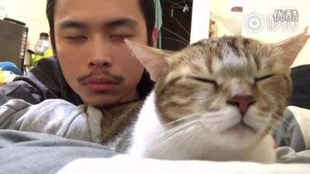 网友和他家的猫咪,让我们忘掉所有的伤痛,一起摇摆~