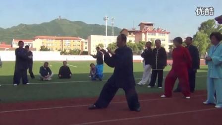 杨氏太极拳85式了李海水老师教学视频_高清