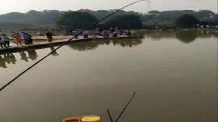 长沙市望城区鸿晟巨物坑单人溜鲟鱼视频