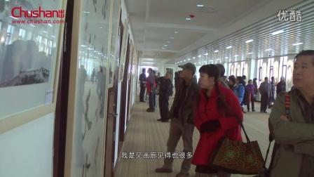 艺术家冯红接受采访