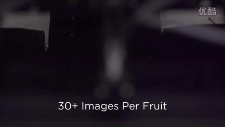 Video - Cherry CS - Prima Frutta