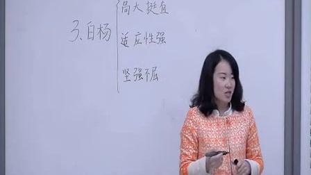 《白杨》人教版五年级下册语文优质课