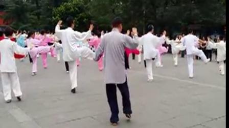 赵幼斌大师在成都领练杨式太极拳85式(2014.8.12.)