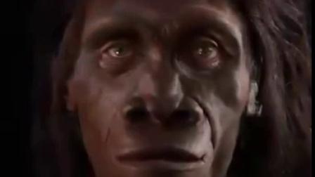 1分钟看完600万年人脸进化史The Evolution of Human Faces in Last 6 Million Years
