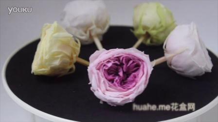 日本大地农园奥斯汀玫瑰永生花系列