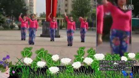 2015最新热门广场舞分解动作教学视频 筷子兄弟—小苹果