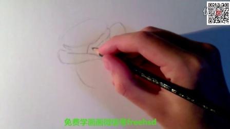 爱画时代,免费学画画,教你画玫瑰2