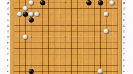 老刘围棋系列讲座之《老刘说恶手》业余5段都错了的题