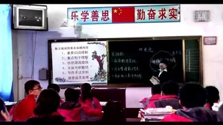 七年級語文《贝壳》黑龙江省林口县三道镇中学林静