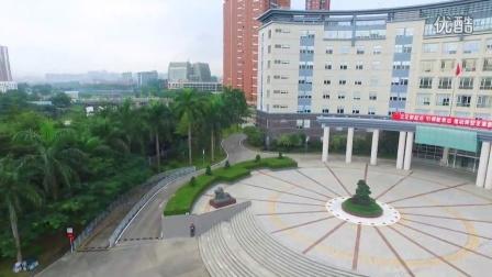 龙华新区管委会大楼航拍