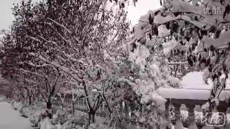 2015年的第一场雪。。。