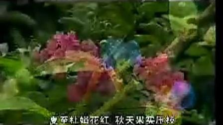 中国名山:五岳《南岳衡山》湖南省衡阳市