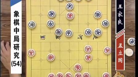 金松主讲GTV象棋教室 象棋中局研究 57集之54