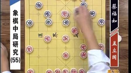 金松主讲GTV象棋教室 象棋中局研究 57集之55