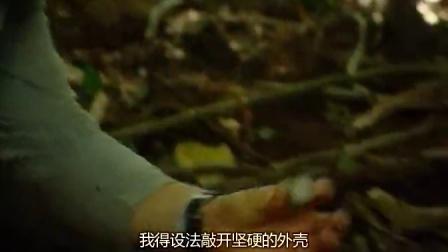 【荒野求生】Man vs Wild 第一季 06启劳亚火山