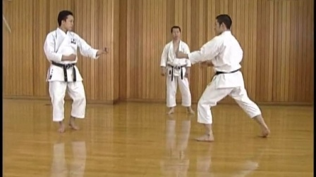 Basic Karatedo (Shotokan) 2