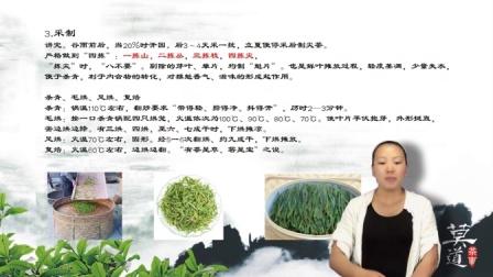 茶文化 茶道视频 茶艺知识 茶艺培训