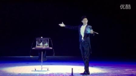 【魔术】与众不同的鸽子魔术表演  李展杰