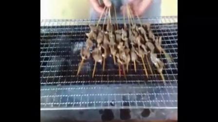 烧烤料配方 烧烤教学视频 烧烤技术培训  烧烤料配方