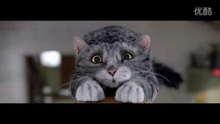 毛茸茸——猫言狗语