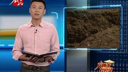土壤改良有妙招 红薯死秧多--燕国胜--通辽农业信息网