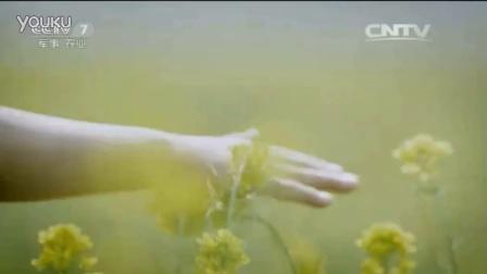 cctv7农业节目ID-小雪篇、田野篇