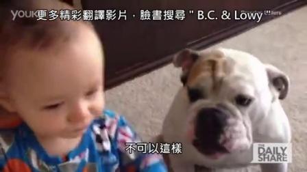 【发现最热视频】小斗牛好可怜!抢熊孩子嘴里的饭吃