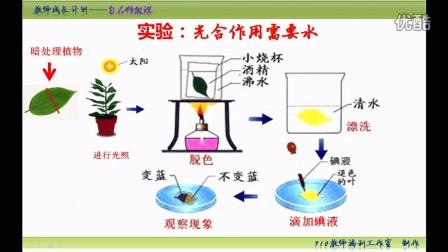 【手掌上的生物课】初中生物中考复习微课:第二十六集 光合作用需要水分