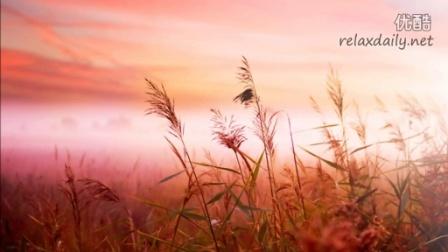 輕音樂 催眠曲 2小時 冥想 休憩 純音樂 大自然 放松專用