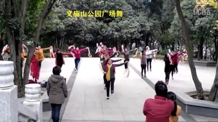 嘉鱼县文庙山公园广场舞   好生活动起来决赛预演