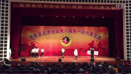 南宋文武学校参加苍南县武术协会第八届代表大会演出