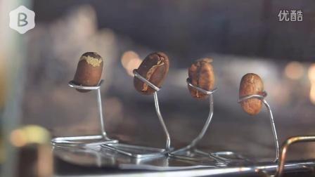 咖啡豆的舞蹈——直观烤箱咖啡豆烘焙 @布袋翻译