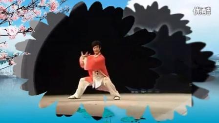 无花果王小波陈式太极拳新配乐