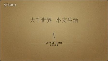 超赞的小支红酒LOGO设计,KEYNOTE制作的视频