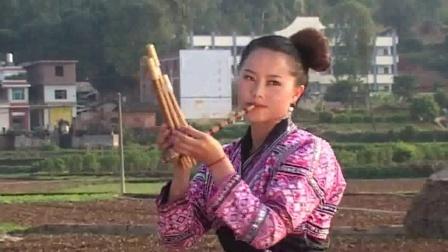 04苗族芦笙歌舞 周敏君专辑 _clip